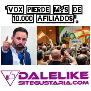 Vox y la lucha interna dentro del partido provoca la pérdida de más de 10.000 afiliados.
